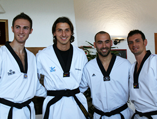Afición al taekwondo